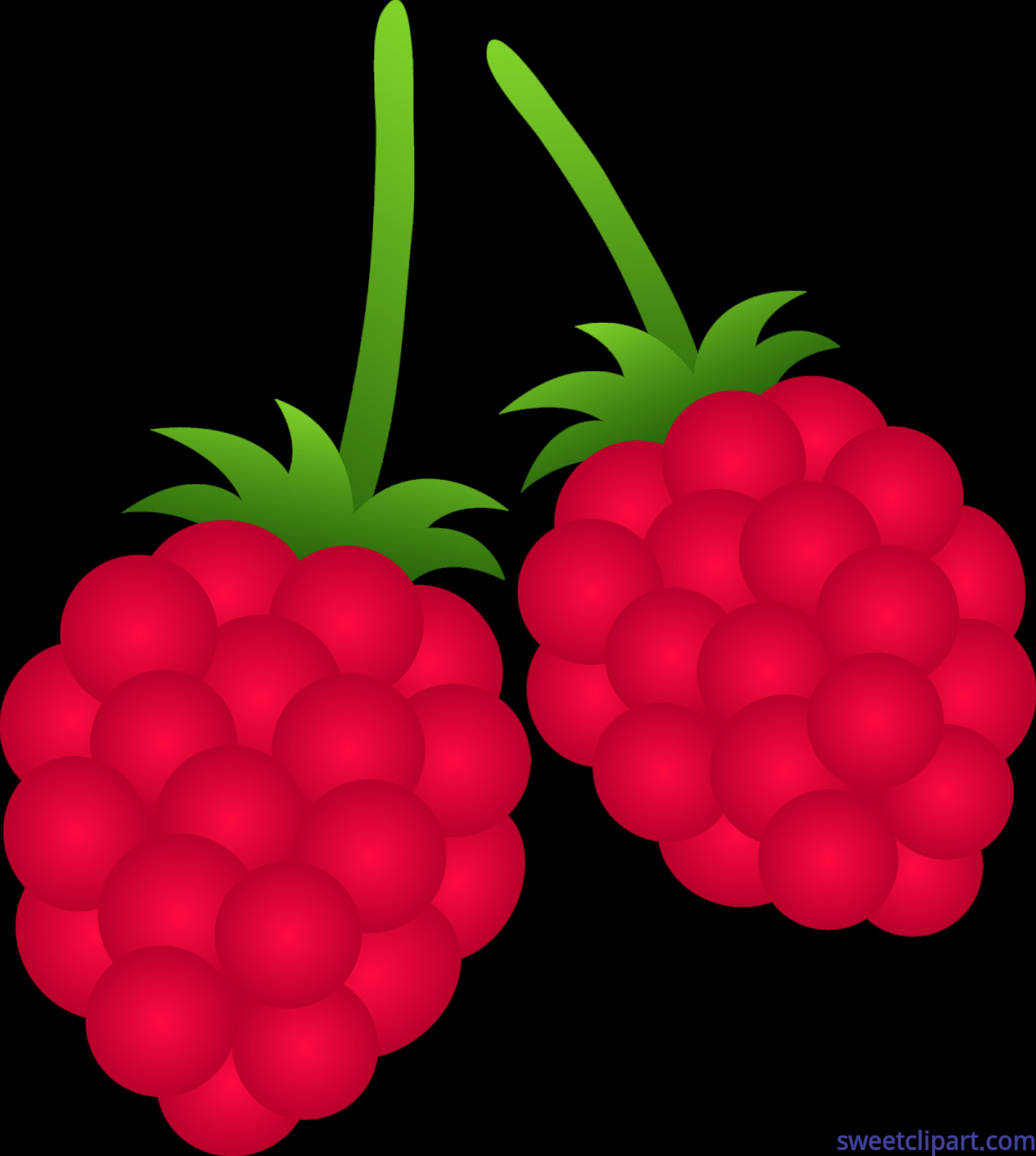 Raspberries Clip Art