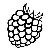 Raspberry; Vector monochrome illustration of raspberry logo.