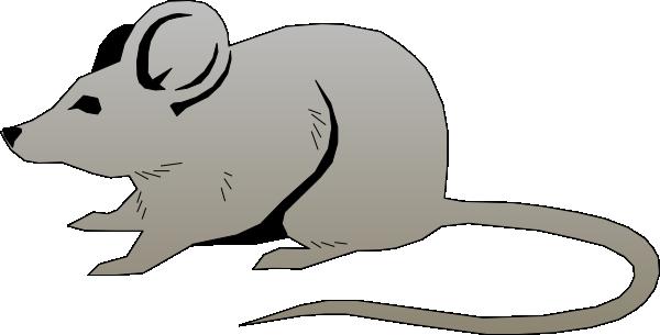 Rat Clipart-rat clipart-8