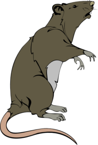 Rat Clipart Black And White Clipart Panda Free Clipart Images