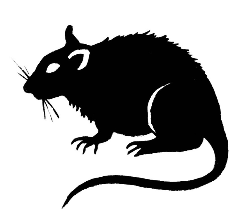 Rat Clipart Black And White Free Clipart Images