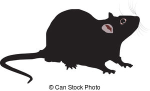 ... Rat - vector illustration of the Rat on white background
