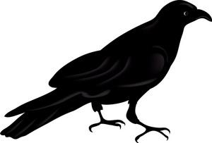 Raven Clip Art-Raven Clip Art-3