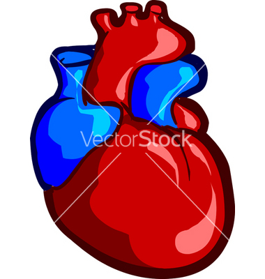 Heart real. Clipart clipartlook