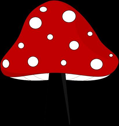 Red and Black Mushroom-Red and Black Mushroom-9