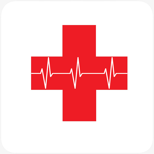 Red Cross With Ecg, Drug, Medical, Treat-red cross with ecg, Drug, Medical, Treatment PNG Image and Clipart-15