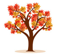 Red fall tree clipart - .