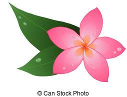 ... red plumeria - Vector illustration of one red plumeria on... ...