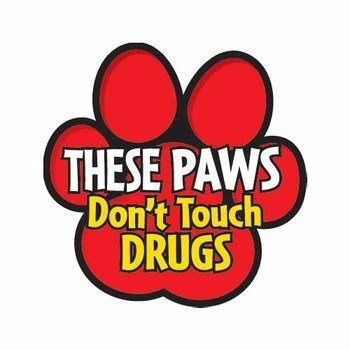 Red Ribbon Week Guadalupe - wants a tree-Red Ribbon Week Guadalupe - wants a tree of these with different colors for each grade-8