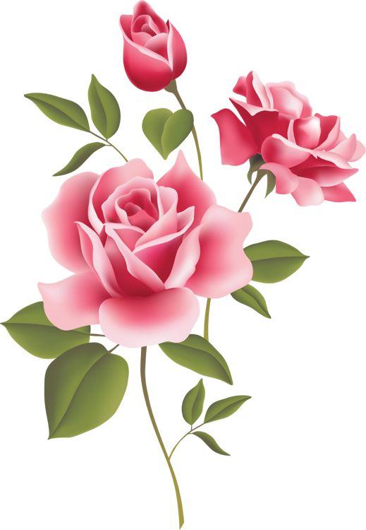 Red Rose Clip Art | Clip Art of Roses