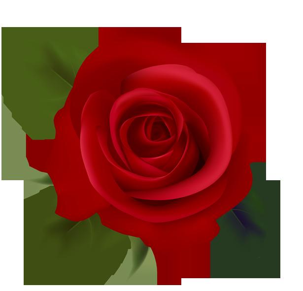 Red Rose Clip Art-Red Rose Clip Art-13