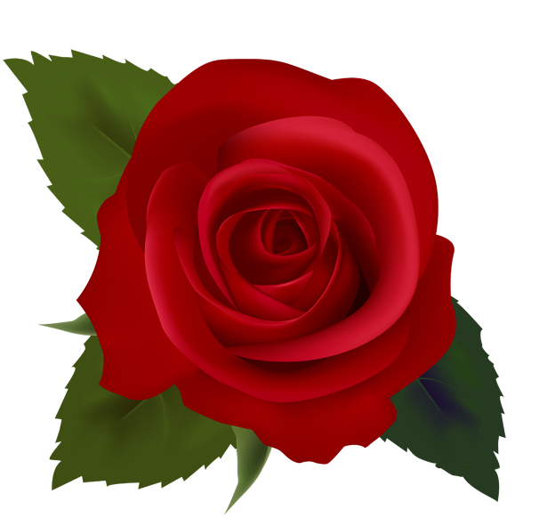 Red Roses Clip Art Images | Clipart Pand-Red Roses Clip Art Images | Clipart Panda - Free Clipart Images-8