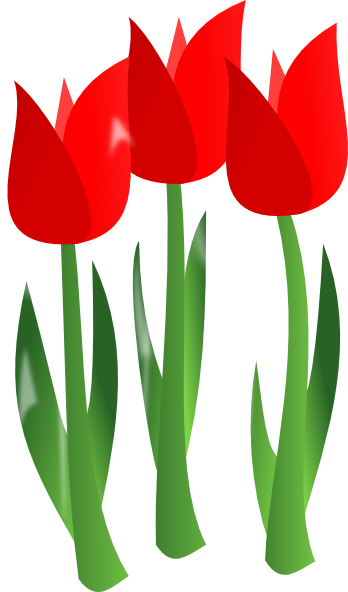 Red Tulips Clip Art At Clker Com Vector -Red Tulips Clip Art At Clker Com Vector Clip Art Online Royalty-3