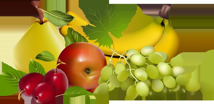 Reduced Risk Of Some Chronic Diseases Fr-Reduced Risk Of Some Chronic Diseases Fruits Provide Nutrients Vital-18