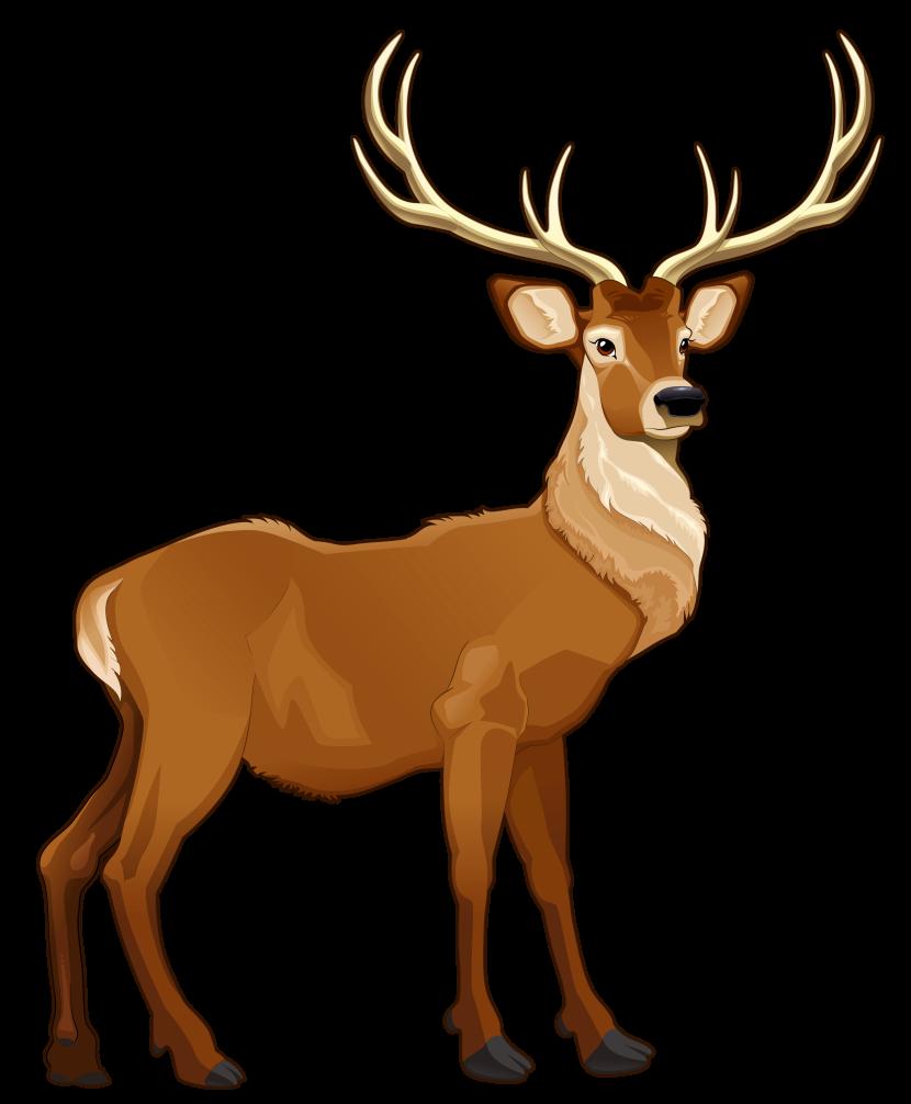 Reindeer Clip Art Clipart\u0026#39;s-Reindeer Clip Art Clipart\u0026#39;s-6