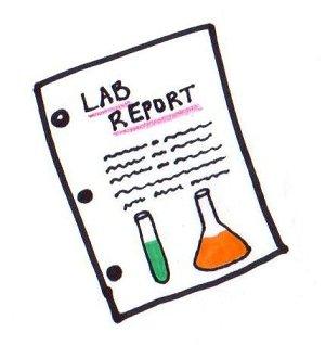 Report Cliparts-Report cliparts-15