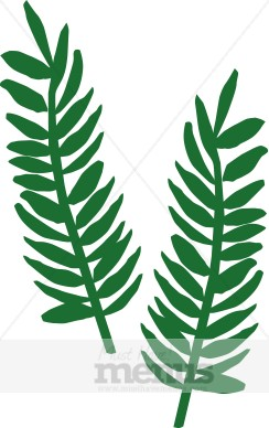 Resolution 244x388 . - Fern Clipart