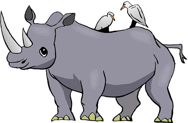 Rhino and Bird Clipart
