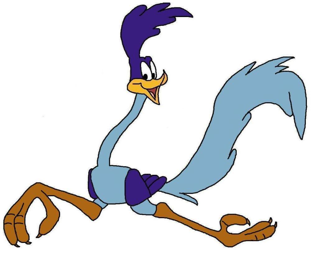 Roadrunner Cartoon-Roadrunner Cartoon-18