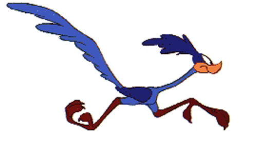Roadrunner clip art hostted-Roadrunner clip art hostted-16
