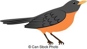 ... Robin Bird - Symbol Of Spring - Amer-... robin bird - Symbol of spring - american robin bird isolated... ...-6