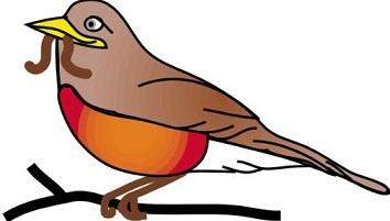 robin perched on a branch-robin perched on a branch-9