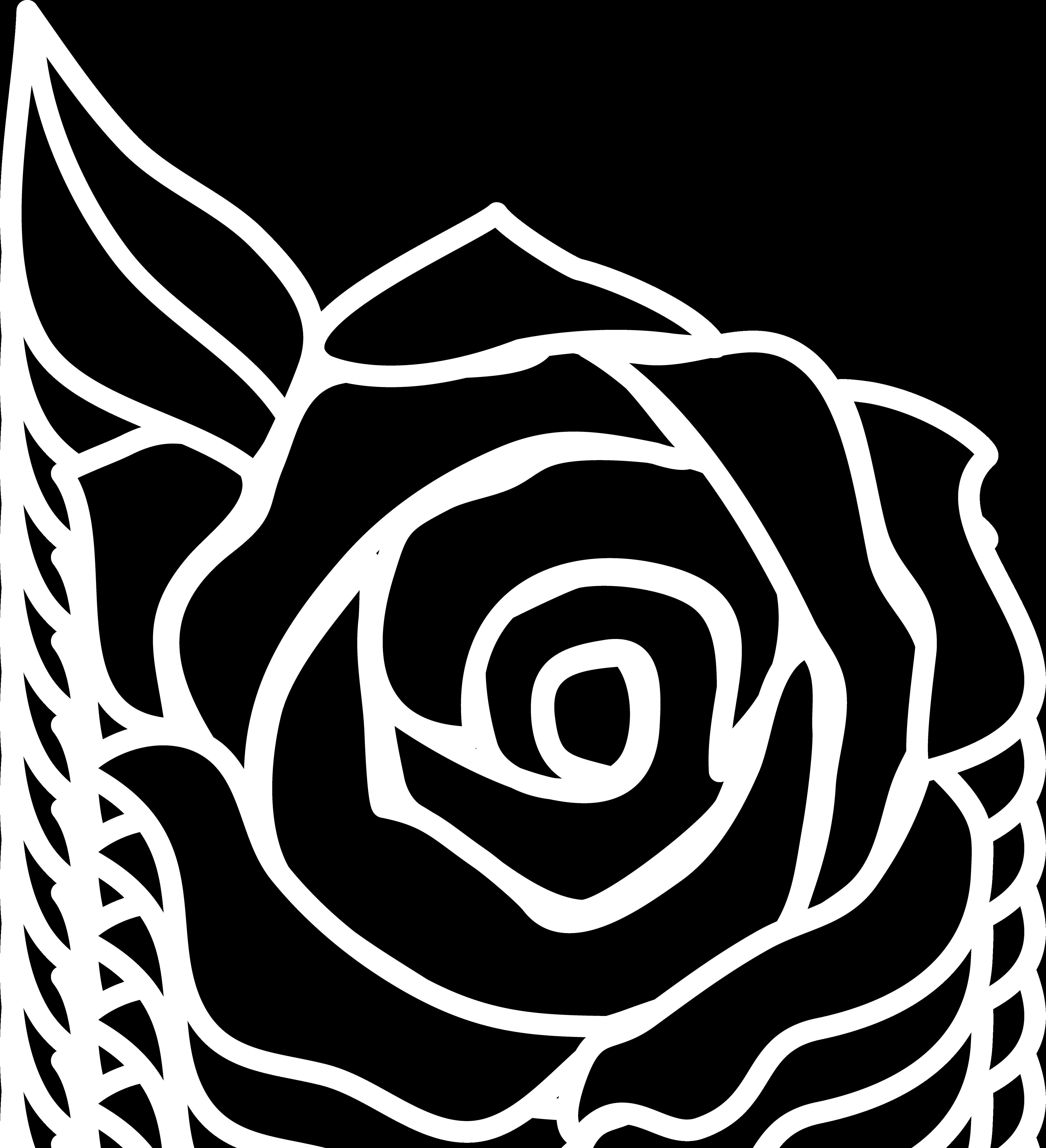 Rose Black And White Black And White Ima-Rose black and white black and white images of roses clipart-10