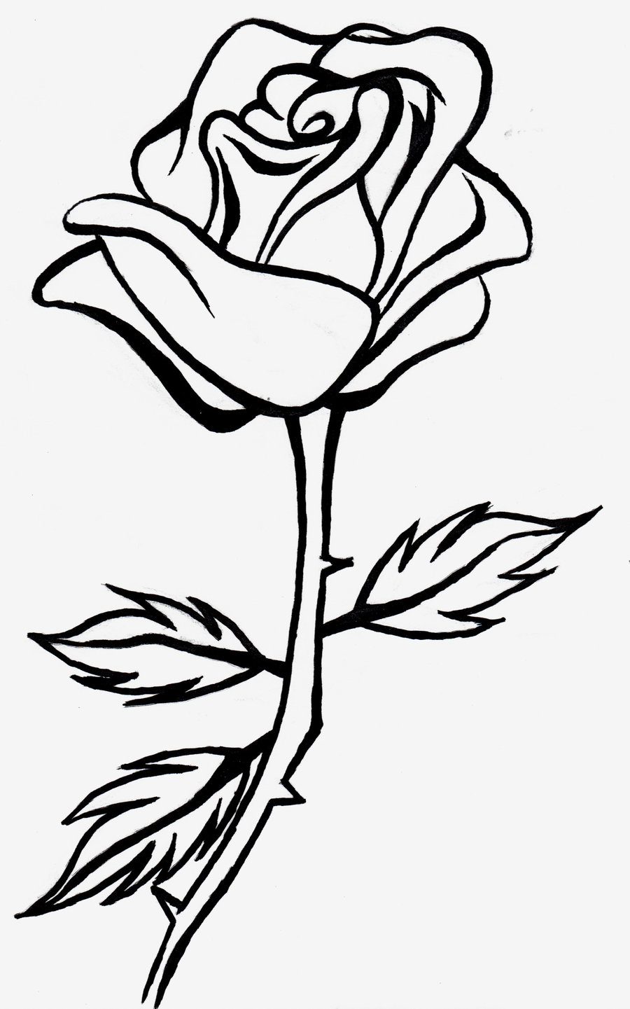 Rose black and white free ros - Rose Clipart Black And White
