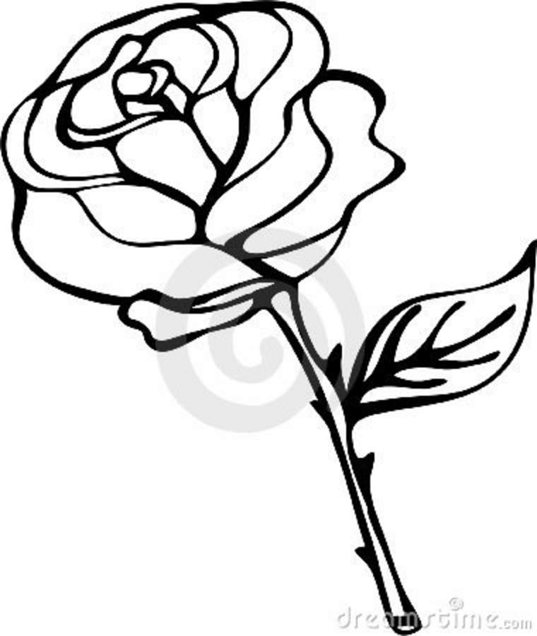 Rose Black And White Outline  - Rose Clipart Black And White