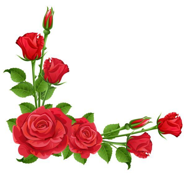 ... Rose Border Clip Art - clipartall ...