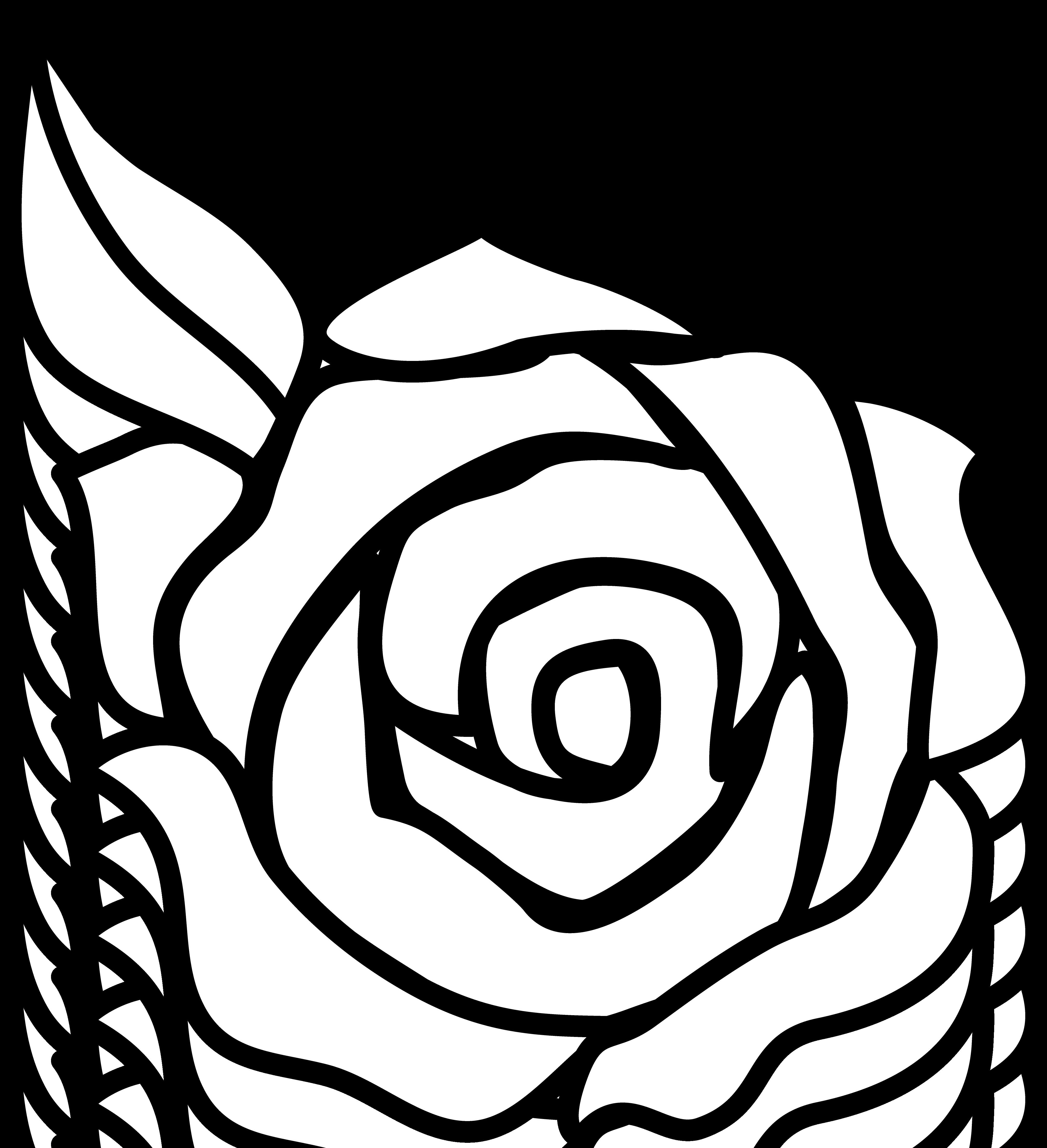 Rose Clip Art - Rose Clipart Black And White
