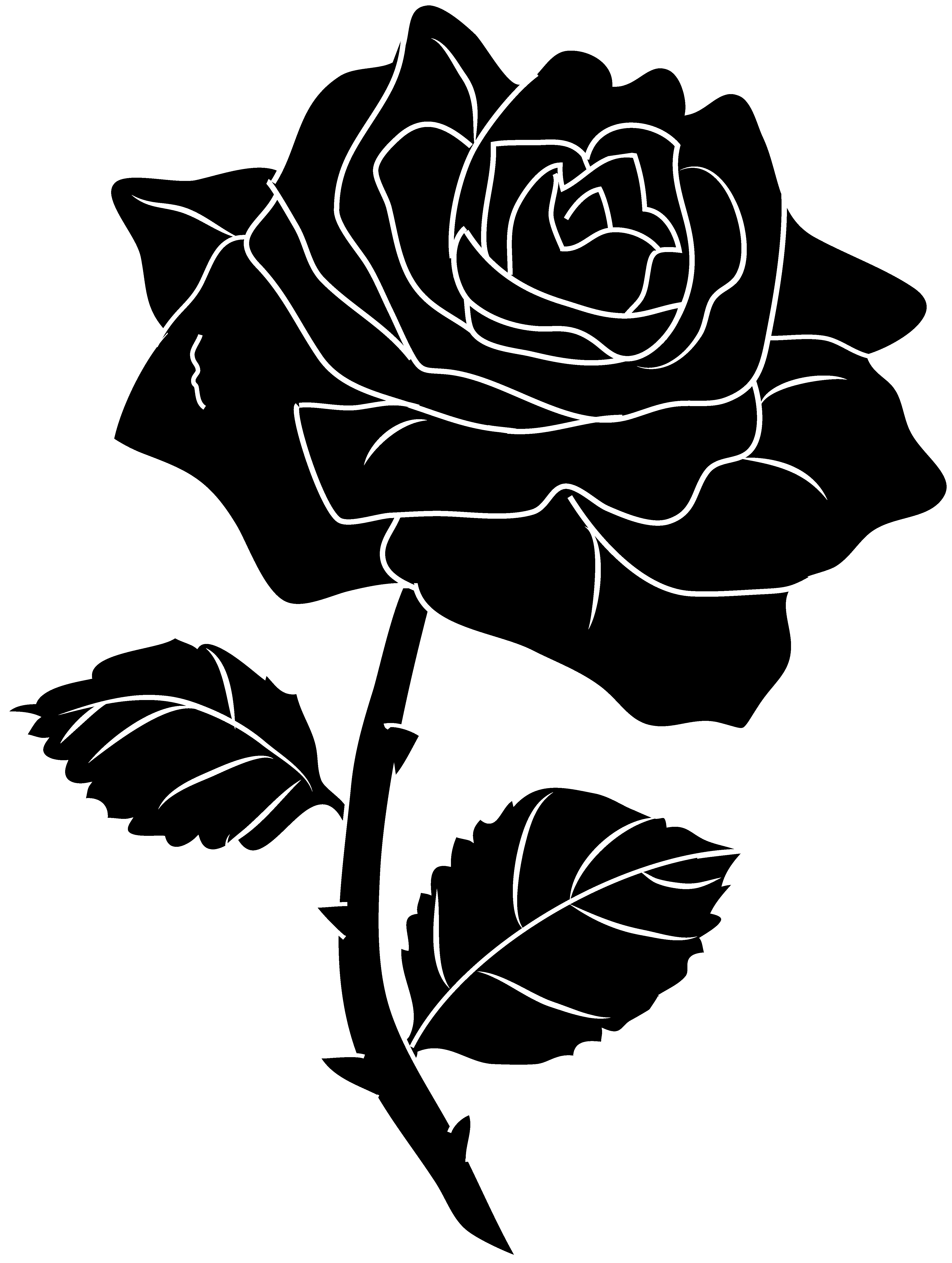 Rose Clipart Black And White-rose clipart black and white-14
