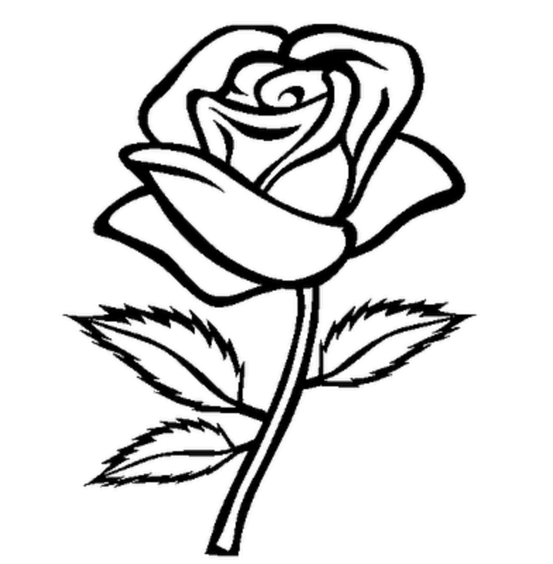 Tea Rose Clipart Black And White: 12+ Rose Clipart