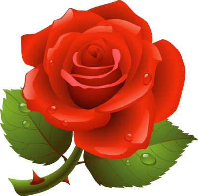 Rose Clipart u0026middot; wrinkle clipart