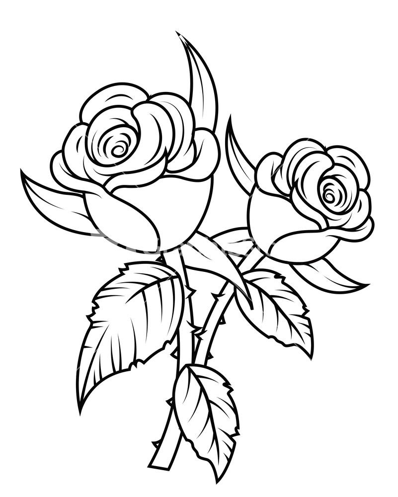 Rose Flowers Clipart Stock .-Rose Flowers Clipart Stock .-15