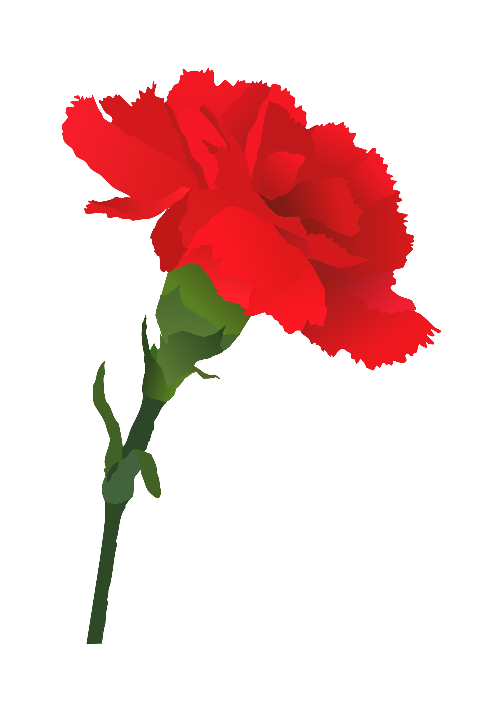 rose vector clipart.