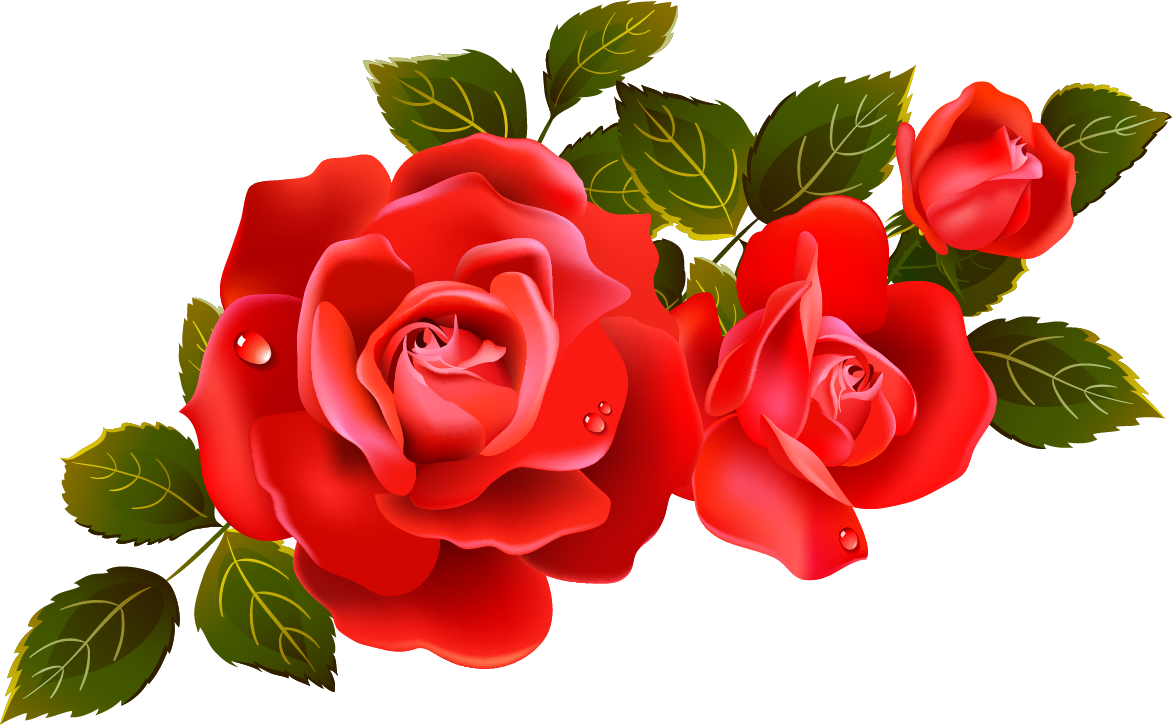 Roses red rose clipart clipart kid