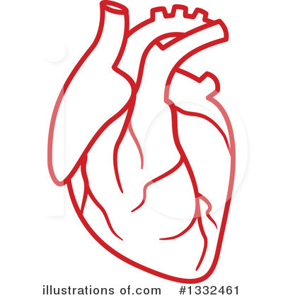 Royalty-Free (RF) Human Heart Clipart Illustration #1332461 by Vector Tradition SM