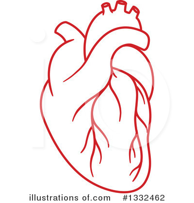 Royalty-Free (RF) Human Heart Clipart Illustration #1332462 by Vector Tradition SM