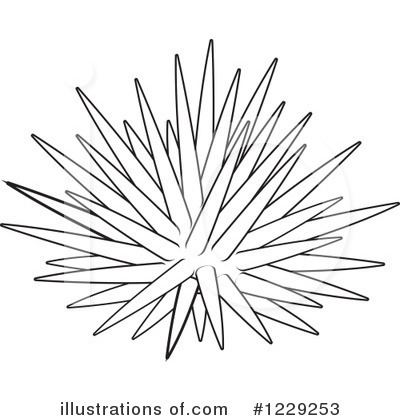 Royalty Free Rf Sea Urchin Clipart Illustration 1229253 By Alex
