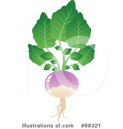 Royalty-Free (RF) Turnip Clipart Illustr-Royalty-Free (RF) Turnip Clipart Illustration #88321 by Tonis Pan-16