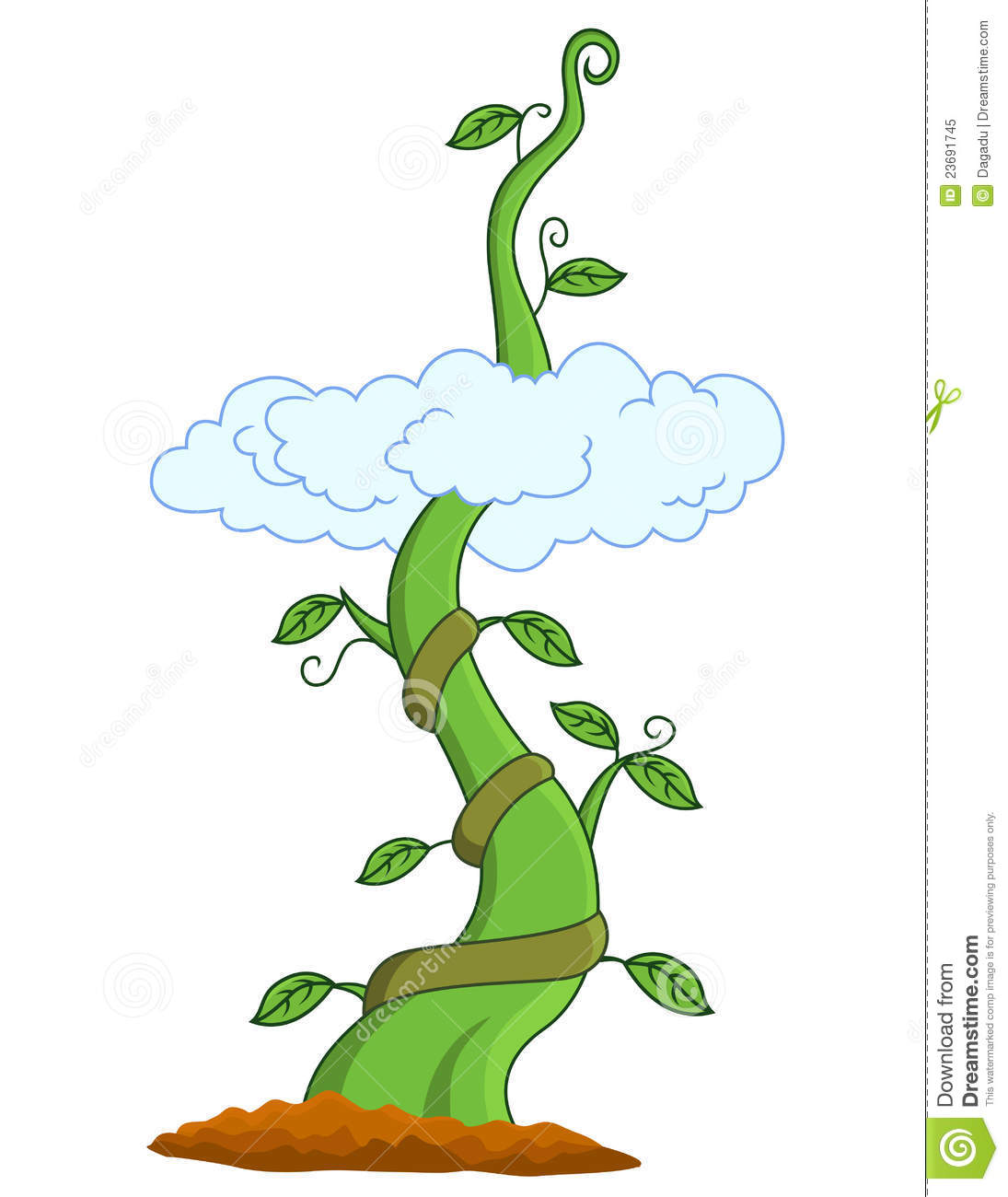 Royalty Free Stock Photo Beanstalk Image 23691745