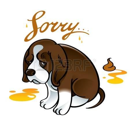 sad dog: Sorry sad puppy dog pet shame shit urine