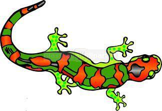 Salamander Clip Art
