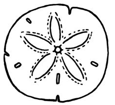 Sand Dollar Clipart - ClipArt Best; Henna, Colors and Henna doodle ...