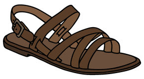 Leather womanu0027s sandal. Hand drawing of a leather low womanu0027s sandal  Royalty Free Stock Image