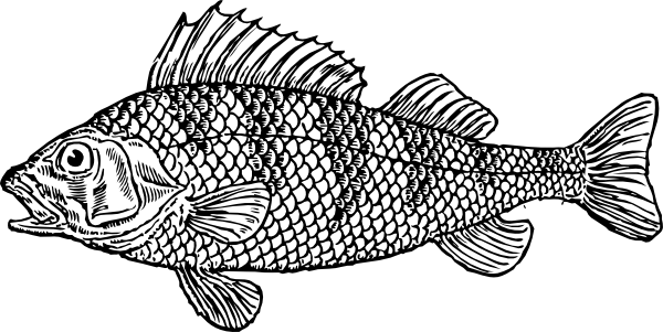 Scaly Fish Clip Art - Vector Clip Art On-Scaly Fish clip art - vector clip art online, royalty free-17