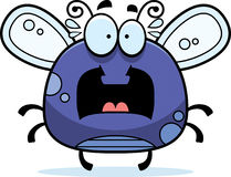 Scared Bug Clipart #1-Scared Bug Clipart #1-17