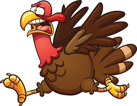 Scared cartoon turkey vector .