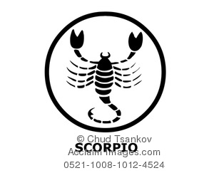 black and white scorpio the scorpion
